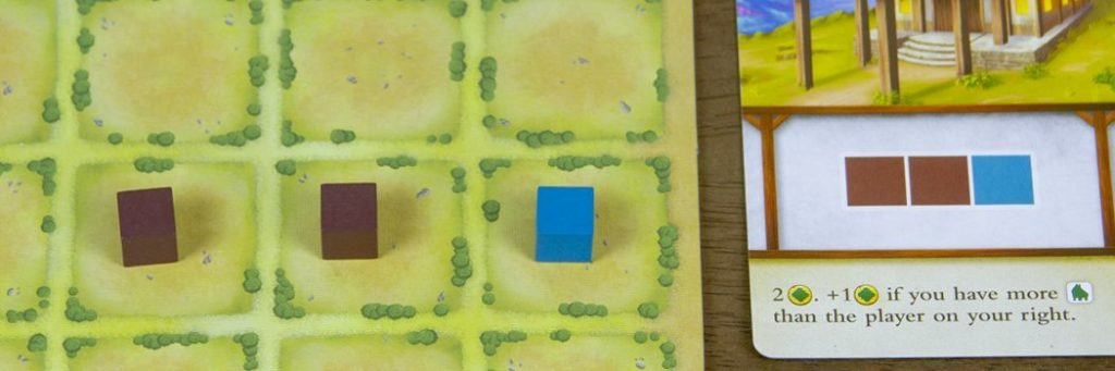 How to Play Tiny Towns - Build Example