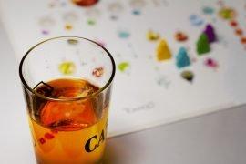 Tokaido Drinking Game